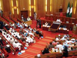 Reps-elect demands 50% pay cut for Buhari, lawmakers, others